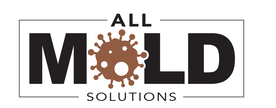 All Mold Solutions
